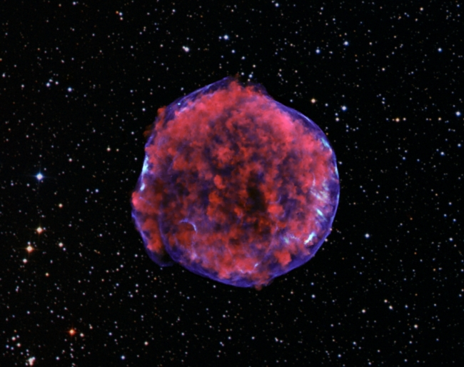 Reverse Shock Waves Light-up Supernova Remnants